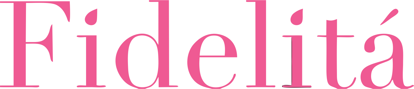 logo fidelita