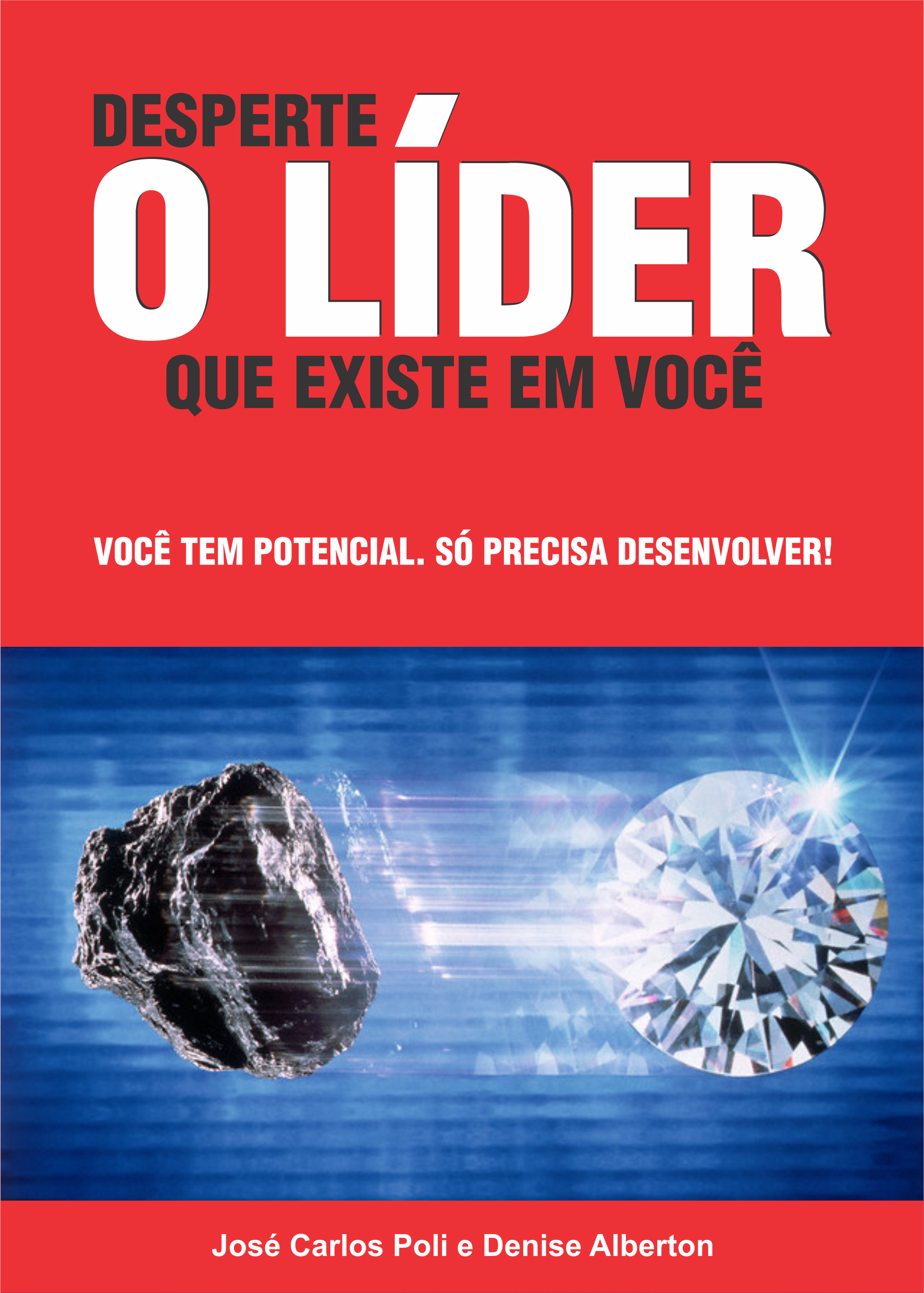CAPA DO LIVRO PDG